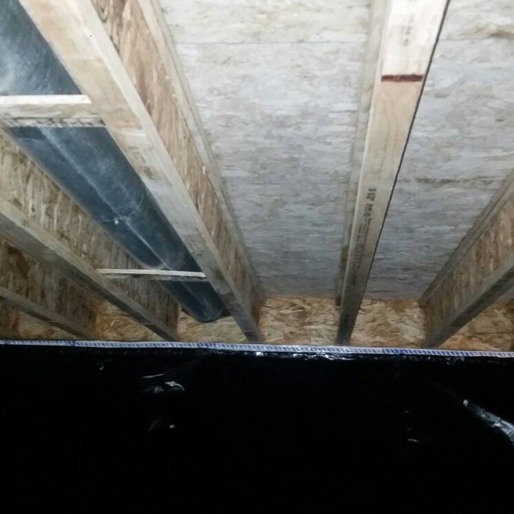 crawlspace-mold-removal-after